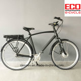 Mountain Bike with Lithium Battery Eb 202 Electric Bicycle