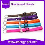 Plain Color Pet Product of Dog Training Collar