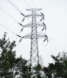 Transmission Line Angle Steel Tower with High Quality