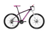 Bicycle, Peerless Mountain Bike (H650)
