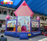 New Arrival Hot Sale Inflatable Jumping Castle