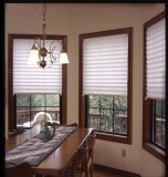 Temporary Polyester or Non-Woven Fabric Pleated Blinds