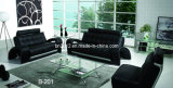 Living Room Genuine Leather Sofa (B-201)