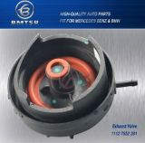 Engine Parts Exhaust Valve 11127552281