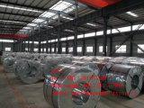 Gr55, Q390 Low Alloy High Strength Steel Coil