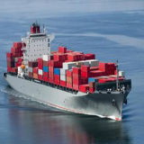 Sea Shipping Logistics From Shanghai to Punta Cuchillo, Venezuela