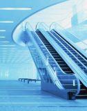 Safe & Comfortable Commercial Escalator -Public Transportation