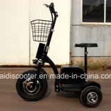 Ce Certificated 3-Wheel Electric Mobility Scooter Sightseeing Vehicle 500W