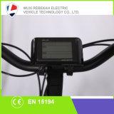 Cheap Electric Bike Bicycle Ebike Wholesale