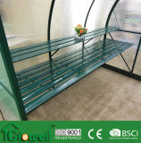 Greenhouse Staging/Shelving with PVC/Aluminium (G-Alu., G-PVC. staging)