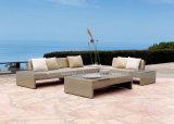 Mtc-159 New Rattan Design Outdoor Garden Sofa Set