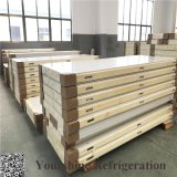 Professional PU Cam Lock Sandwich Panel Cold Room/Storage for Food