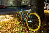 Fashionable Design 700X25c 4130cro-Mo Frame City Bicycle (BE-004)