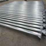 6m Hot Deep Galvanized Octagonal Steel Pole