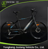 2015 European Hot Sale Electric Bicycle with En15194