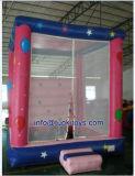 Lovely and Funny Inflatable Castle with Competitive Price (A006)