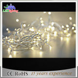Holiday LED Outdoor Christmas Decoration Warm White Fairy Lights
