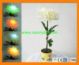 Color Changing Solar Power Flower Light as Rose Shape