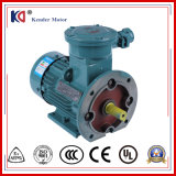 380V 50Hz Flame Proof AC Motor
