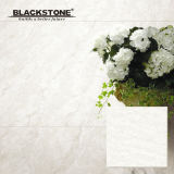 600X600mm Natural Stone Polished Porcelain Tile for Building Project (JZ6040)