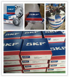 SKF NSK Auto Parts of Deep Groove Ball Bearing Made in China (6317 RS zz)