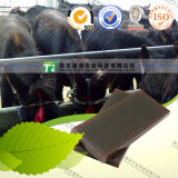 Manufacturer Supply Tonic Crude Medicine Donkey Hide Gelatin