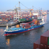 Best Ocean Shipping Freight Agent From China to Barranquilla/Colombia
