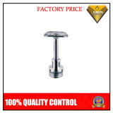 Stainless Steel Pipe Fittings Saddle Support (JBD-A069)