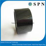 Permanent Ceramic Ferrite Magnet for Industry Magnet