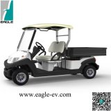 Golf Buggy, 2 Seat with Long Cargo Box, Flip Windshield