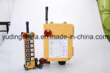 Industrial Wireless Remote Control Switch F24-10d