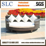 Sun Lounger Chaise Lounge (BT-1140-2)