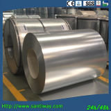 Hot Dipped Galvanized Steel Coil (SDW-0414)