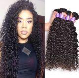 Deep Curly Virgin Human Hair Unprocessed Brazilian Hair