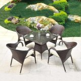Outdoor Tables and Chairs Rattan Outdoor Furniture, Tables and Chairs (Z351)