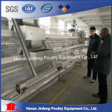 Chicken Cage Automatic Layer Chicken Cage System for Sell
