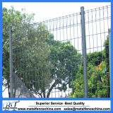 Manufacturer Wrought Fence Roll Top Fence for Sale