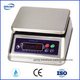 Electronic Rice Food Fish Weight Scale 30kg