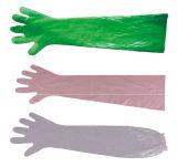 Long Glove/PE Glove/Insemination Glove