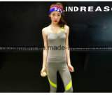 Women Fashion Sports Suit, Sports Top, Gym Clothing
