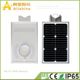 12W High Brightness All in One Solar Light Garden Light with PIR Sensor