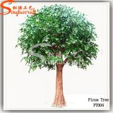 2.5 Meter Artificial Ficus Tree