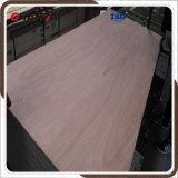 Oukume/Bintangor/Sepele Veneer Faced Plywood From China