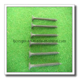Black Phosphate Screw (3.5*32)