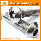 DIN7380 Ss304 Hex Socket Head Screw
