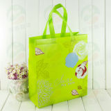 Non Woven Bag with 20kg Holding Customised Print (My-029)