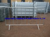 Road Way Safetey Crowd Control Barrier High Quality
