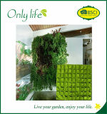 Onlylife BSCI Audit New Multi-Pockets High Quality Vertical Plant Pots
