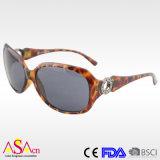 Designer Fashion Plastic Lady Eyewear with UV Protection (91084)