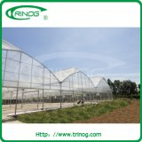 Tropical green house for agriculture